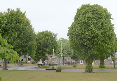 Village Green, Tomintoul
